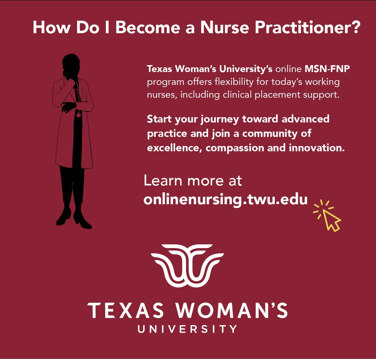 Texas Woman's University's online MSN-FNP program offers flexibility for today's working nurses.