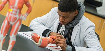 FNP student studying human body anatomy